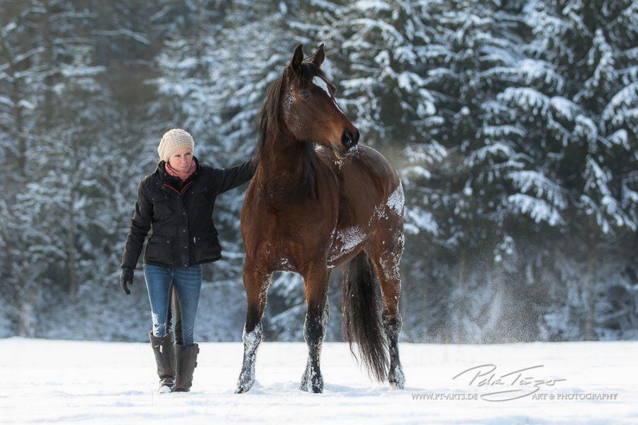 Susanne Lohas und Warmblutstute Billy - gepudert
