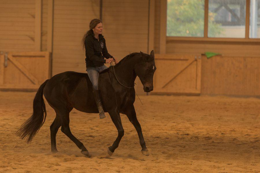 Susanne und Browny - Demo auf der Schnyder Ranch in Ravensburg
