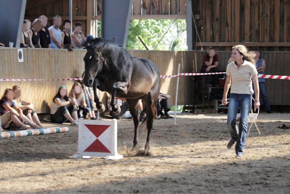 Susanne Lohas und Browny am Tag der offenen Stalltür - Sprung frei
