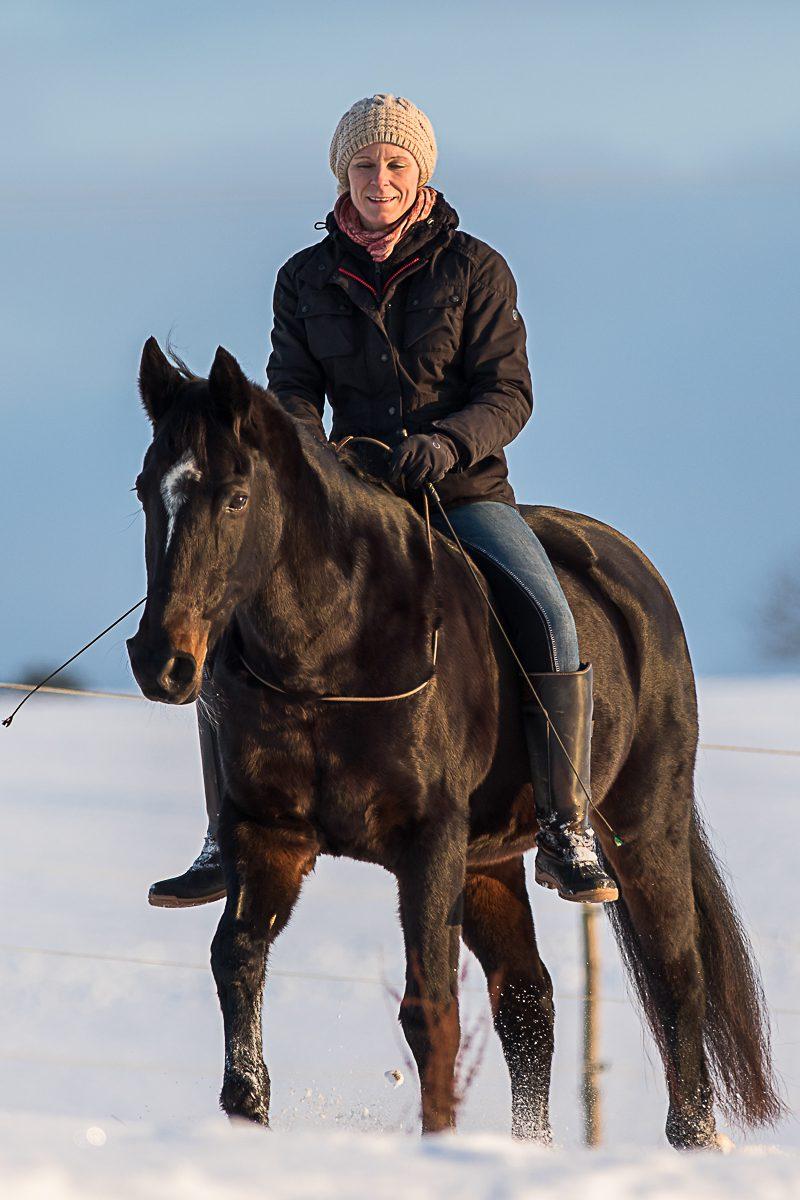 Winterfreude - frei durch den Schnee reiten