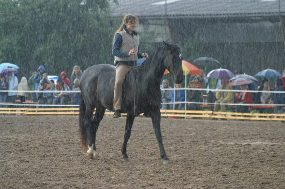 Vorführung im strömenden Regen :-)