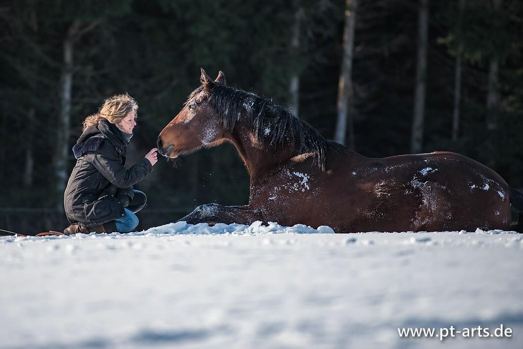 Susanne Lohas und Warmblutstute Billy auf der Winterkoppel