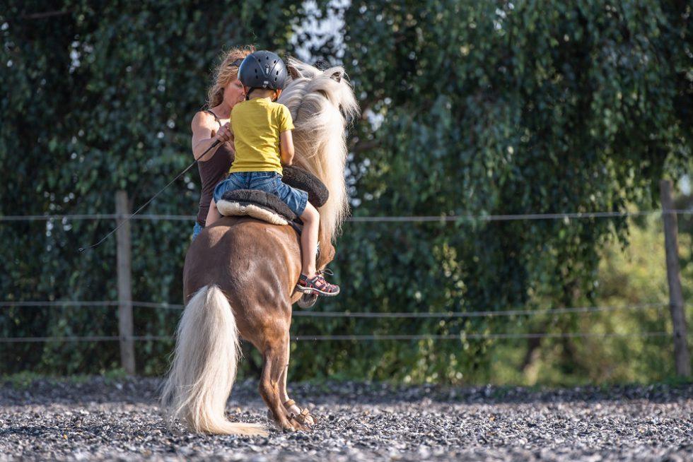 Steigen macht Spass - dem Pony und den Kids
