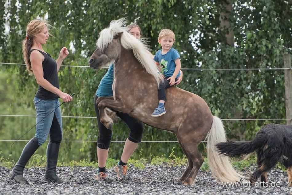 Remy stolzes Kinderpferd