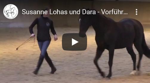 susanne_lohas_freiheitsdressur_liberty_horse_dressage_video_vorfuehrung_linslerhof_dara_neu