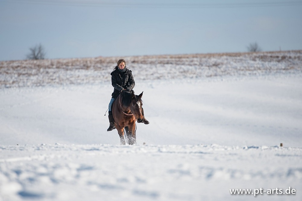 Mit Billy durchs Winterwunderland