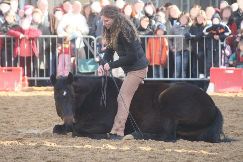 Susanne Lohas und Browny auf den Gmünder Pferdetagen