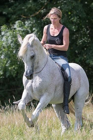 Susanne Lohas und Araber Milos frei geritten in der Levade - Horse-in-Balance